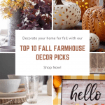 Images of fall decor and pumpkins