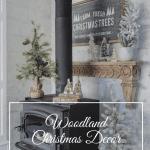 Woodland Christmas theme