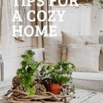 Text over photo of living room with cozy home pillows